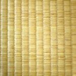 梅雨 カビ対策 畳