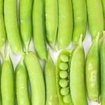 スナップエンドウを美味しく食べるレシピ!旬を食す家庭菜園の育て方