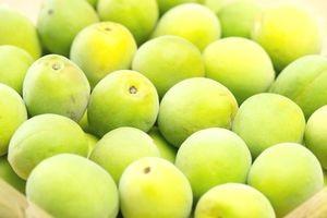 梅酢の効果とは?簡単な作り方と料理以外の使い方