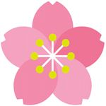 折り紙で作る桜♪可愛いお花見用アイテムを準備しよう!