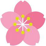 折り紙 桜